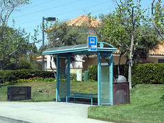 Carlsbad 4-15-17 (27) (Photo Nut 2011) Tags: carlsbad sandiego california busstop