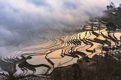 *Duoyishu @ light and shadow* (albert.wirtz) Tags: albertwirtz fog mist niebla nebbia brume brouillard nebel duoyishu china ricefields terracedricefields lightandshadow yunnan yuanyang sunrise reflection lightreflections lichtspiegelung twilight southwestchina unesco worldheritage weltkulturerbe unescoweltkulturerbe nikon d810