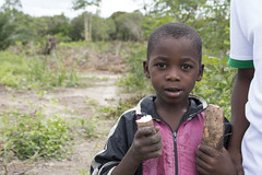 A young boy eats fresh cassava root, Mkuranga district, Tanzania. Photo H.Holmes/RTB