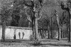Sony *467 (KKS_51) Tags: sonyalpha7ii wetterau klosterarnsburg