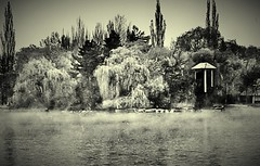 Las nieblas del Lago #mist #niebla     #lago #llac #lake #spring #primavera #sepia #whiteandblack #puigcerda #lacerdanya (Miamy7) Tags: instagramapp square squareformat iphoneography uploaded:by=instagram naturaleza naturalezacautivadora lago lake lacerdanya puigcerdà mist niebla