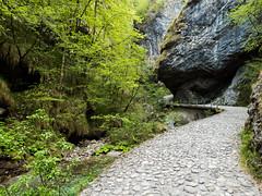 vertova6 (aletaty) Tags: trekking vertova sentiero