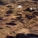 Somaliland_Mar17_0068 edit-e2