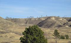 View of hills (tigerbeatlefreak) Tags: hills landscape nebraska pine ridge