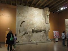 IMG_4315 (clare_and_ben) Tags: 2017 hydepark chicago illinois museum orientalinstitute clare dursharrukin khorsabad assyria assyrian sargon sargonii lamassu