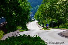 IMG_4840 (Fotografie-Homrighausen) Tags: natur ort stein baumstamm siegen wittgenstein landschaft landscape