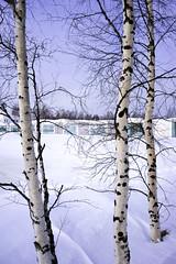 170318141928_A7 (photochoi) Tags: finland travel photochoi europe kemi sampo icebreaker
