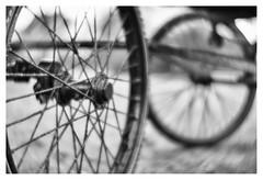 Wheels (leo.roos) Tags: wheels wielen koets coach carriage noiretblanc a7rii lomographydaguerreotypeachromat6429 aprilfoolishness2017 dyxum challenge darosa leoroos