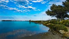 Alba allo stagnone (I. Bellomo) Tags: sole cloud nuvola sun cielo albero flickr isoleegadi favignana kitesurf birgi tramonto quiete mare xt2 fujifilm alba mediterraneo saline marsala trapani