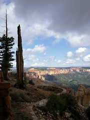 P1030624 (thang nguyen photography) Tags: bryce canyon nationalpark lumix gf1 20mm landscape scream0ftheph0t0grapher