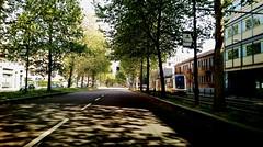MILANO - Viale Certosa direzione centro città. (Gi@nni B.) Tags: milano milan milanstreetcar sirietto streetcar strade roadpics italia italy