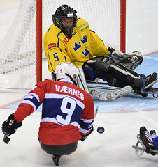 Preliminary round, Game 12 (NOR vs. SWE) (Paralympic) Tags: para norway sweden swe nor hockey sledge gangneung southkorea icehockey