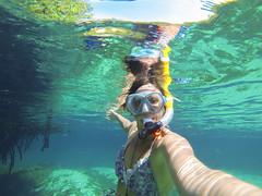 Tulum Casa Cenote aqua water mangroves