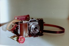 One of my old beauties (laetitia.delbreil) Tags: camera vintagecamera color colour couleur colore film argentique analogue analogico análogo filmphotography filmisnotdead filmisback filmisawesome ifeelfilm analogsoul ishootfilm westillcare pentacon prakticab200 prakticar50mm118 35mm slr singlelensreflex kodakcolorplus200 iso200 zeissikon ikonta52224 foldingcamera cmwdred believeinfilm zeissikonikonta