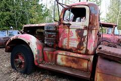 IMG_2699 (Irina Souiki) Tags: rusty crusty cars mcleansautowreckers milton ontario old oldcars