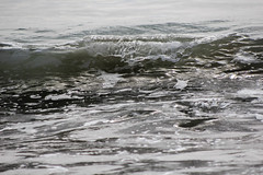 SBCarp032017-8 (MegzyTred) Tags: carpinteria state beach california carpinteriabeach santabarbara carp sb megzytred mightymightymegzy cliftonportraits wave breaking crest tide boogieboard spring waves ocean sea pacific beautiful reflection glassy glass seaweed windy sand rolling oil boat cloudy foam
