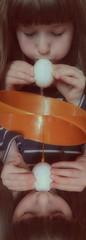 """""""Two Times Lotte"""" Blowing out Eggs - Preparation for coloring Easter Eggs - Holy Thursday Last Supper  Das doppelte Lottchen: Eier ausblasen zum Anmalen, Vorbereitung Abendmahl: Nudeln mit Ei -  Gründonnerstag Letztes Abendmahl (hedbavny) Tags: jesus abendmahl kreuzigung mythos religion märchen osterei easter ostern lotti lottchen gesicht face portrait porträt child kind kid mädchen girl frau woman egg ei easteregg blasen pusten ausblasen eidotter eigelb eiweiss weis white transparent roh ungekocht schüssel bowl schale orange weiss blue blau finger hand blow gelb yellow zahl nummer ziffer number datum ablaufdatum shell eischale eggshell stempel aufdruck red rot spiegel mirror spiegelung reflection karwoche gründonnerstag maundythursday holythursday goodfriday karfreitag austria hedbavny"""