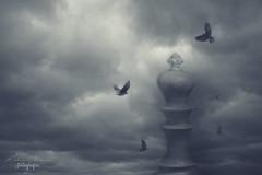 Final / The end. (Kathy Chareun) Tags: ajedrez chest game juego sky cielo clouds nubes war guerra cuervos birds aves lose perder world earth tierra mundo final end el death muerte surrealismo realidad surrealism surrealist surrealista fly vuelo