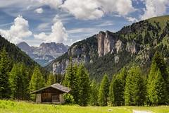 Giù per la valle (cesco.pb) Tags: valdifassa valsnicolò catinaccio dolomiten dolomiti dolomites alps alpi trentino italia italy canon canoneos60d tamronsp1750mmf28xrdiiivcld montagna mountains