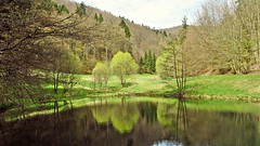 Jackson Lake (kadege59) Tags: albrechts jacksonlake nature natur see outside wow wonderfulnature germany thüringen deutschland thuringia april easter happyeaster ostern osterspaziergang