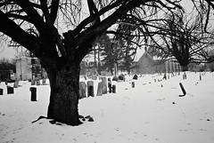 R1-054-25A (David Swift Photography Thanks for 21 million view) Tags: davidswiftphotography philadelphia mtairy northwestphiladelphia churches cemeteries graveyards historiccemeteries 35mm film