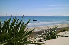 Alimini - La nave (carlopellicano) Tags: italia puglia salento otranto alimini canon eos shipwreck beach sun ocean sky blue april nofilter