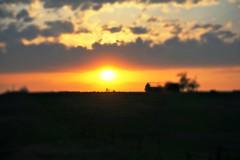 Sunset After Storm (pam's pics-) Tags: ks kansas midwest us usa america clouds storms sunset washingtonkansas courthouse nature sun cloudy pamspics pammorris sonya6000 barn silhouette tiltshift