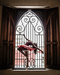 _MG_7761 (alejandrocoutinho) Tags: ballet balletista ballerina bailarina photography photo venezuela arte barquisimeto windows red tutu belleza antinatura
