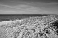 Strandhafer (Lichtabfall) Tags: himmel sky clouds wolken einfarbig blackwhite blackandwhite monochrome schwarzweiss sea meer ostsee inselpoel poel landscape seascape mecklenburgvorpommern landschaft