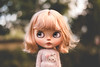 Birdie, and her glittering pewter eyes (Project Doll House) Tags: blythe doll cupcake curio birdie ruby customblythe