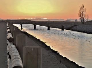 HFF ~ Wintersburg Channel