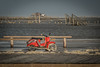 1170822-St.-Peter Ording-.jpg (Mille.12) Tags: wind beach northsee strand wasser tiere stadt ording 2016 sylvester nordsee stpeterording