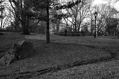REJECT SESSIONS!!! (a.cadore) Tags: fujifilm fujifilmxt1 nyc newyorkcity xf35mmf2rwr xt1 lgt uptown centralpark landscape candid blackandwhite bw