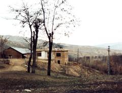 Baskil, 1983
