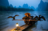 The Comorant Fisherman (awhyu) Tags: china travel photography fisherman guilin yangshuo andrew cormorant yu karst moutains