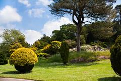 "Dyffryn Gardens • <a style=""font-size:0.8em;"" href=""http://www.flickr.com/photos/32236014@N07/9097903994/"" target=""_blank"">View on Flickr</a>"