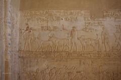 Tomb of Petosiris 19 (eLaReF) Tags: egypt tombs isadora ibex elgebel tunaelgebel petosiris tunaelgebbel