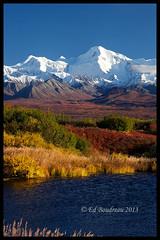 Denali Autumn (Ed Boudreau) Tags: autumn usa lake mountains fall alaska landscape fallcolors bluesky snowcappedmountains alaskamountains denaliparkroad autumnalaska