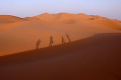 ombre nella sabbia #3 (lepustimidus) Tags: desert morocco maroc marocco deserto merzouga ergchebbi
