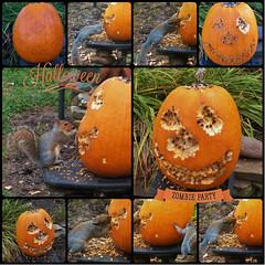 Zombie Party (MissyPenny) Tags: halloween pumpkin squirrel artist pennsylvania zombie peanuts pumpkincarving scarey peanutbutter buckscounty pumpkinface bristolpennsylvania pumpkinideas kodakz990 pdlaich missypenny