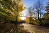 A Scottish Autumn (Neo7Geo) Tags: sun scotland glasgow sunny clear abigfave
