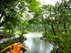 Charizard in Hiroshima, Hiroshima 17 (Shukkei-en Garden) (Kasadera) Tags: toys hiroshima figure pokemon pokmon  charizard   glurak  shukkeiengarden pokemonkids   dracaufeu