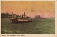 Milson's Point Horse Ferry, Sydney Harbour (c.1908)