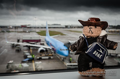 POTD 03 February 2013: Beni at Manchester Airport (Ian M Butterfield) Tags: bear uk greatbritain england building english hat plane buildings bag airplane manchester toy toys clothing airport europe nw european teddy northwest unitedkingdom britain aircraft air bears transport hats eu objects aeroplane potd plush transportation teddybear gb british teddies runway teddybears cuddlytoy softtoy airtravel manchesterairport headgear beni cuddlytoys softtoys householdobjects cuddlies greatermanchester northwestengland nwengland flightbag