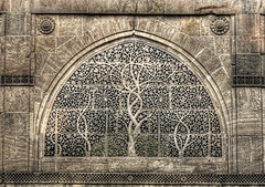 Ahmedabad IND - Sidi Saiyyed Mosque window carving