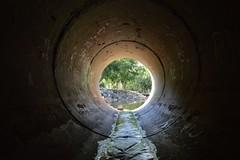 Shortie Drain (darkday.) Tags: park urban pipe australia brisbane drain explore qld exploration urbex rcp