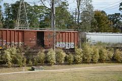 DTS_1762 (VIAL GRAFFITI) Tags: bench graffiti texas houston trains freighttrains freight graffititrain benching fr8trains fr8heaven dailybench