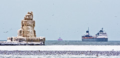 Frozen on the lake (Ryan Reeves Photographer) Tags: light ohio lighthouse house lake snow vortex cold west ice canon harbor frozen december ship photographer lakeerie seagull cleveland great lakes cargo greatlakes clevelandohio editorial erie polar tanker pierhead manistee bulk bulkcarrier cargoship harborwest ryanreeves polarvortex harborwestpierheadlighthouse wdb6831 manisteecargoship