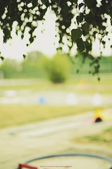 (Strolka) Tags: tree leaves golf bokeh minigolf course birch