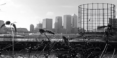 Canary wharf seen from Star lane (Andrew McCarter) Tags: urban london monochrome cityscape canarywharf